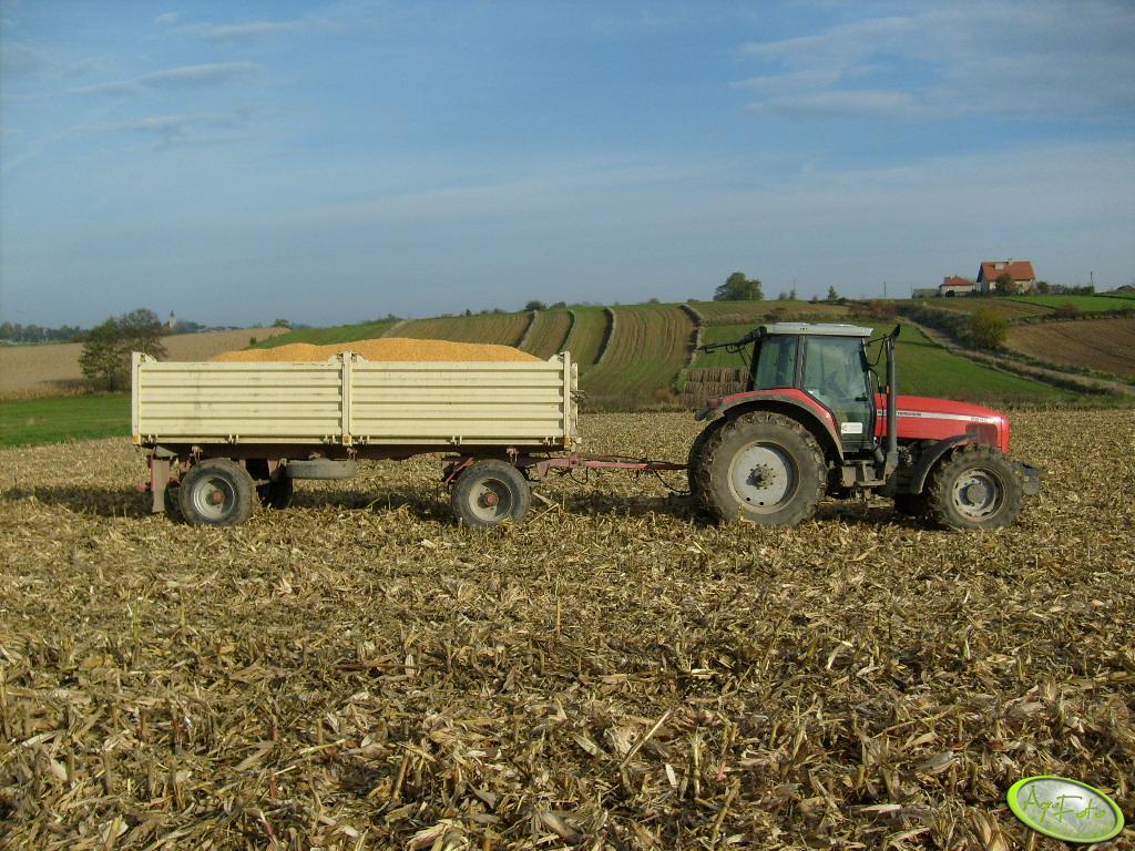 Ciągnik rolniczy MF 8240 + autosan