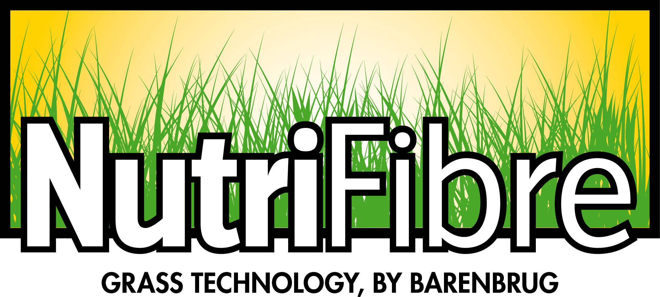 Jaką mieszankę nasion traw wybrać?