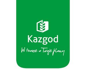 """Kazgod wspiera akcję """"Świąteczne prezenty dla dzieciaków od przyjaciół Agrofoto"""""""