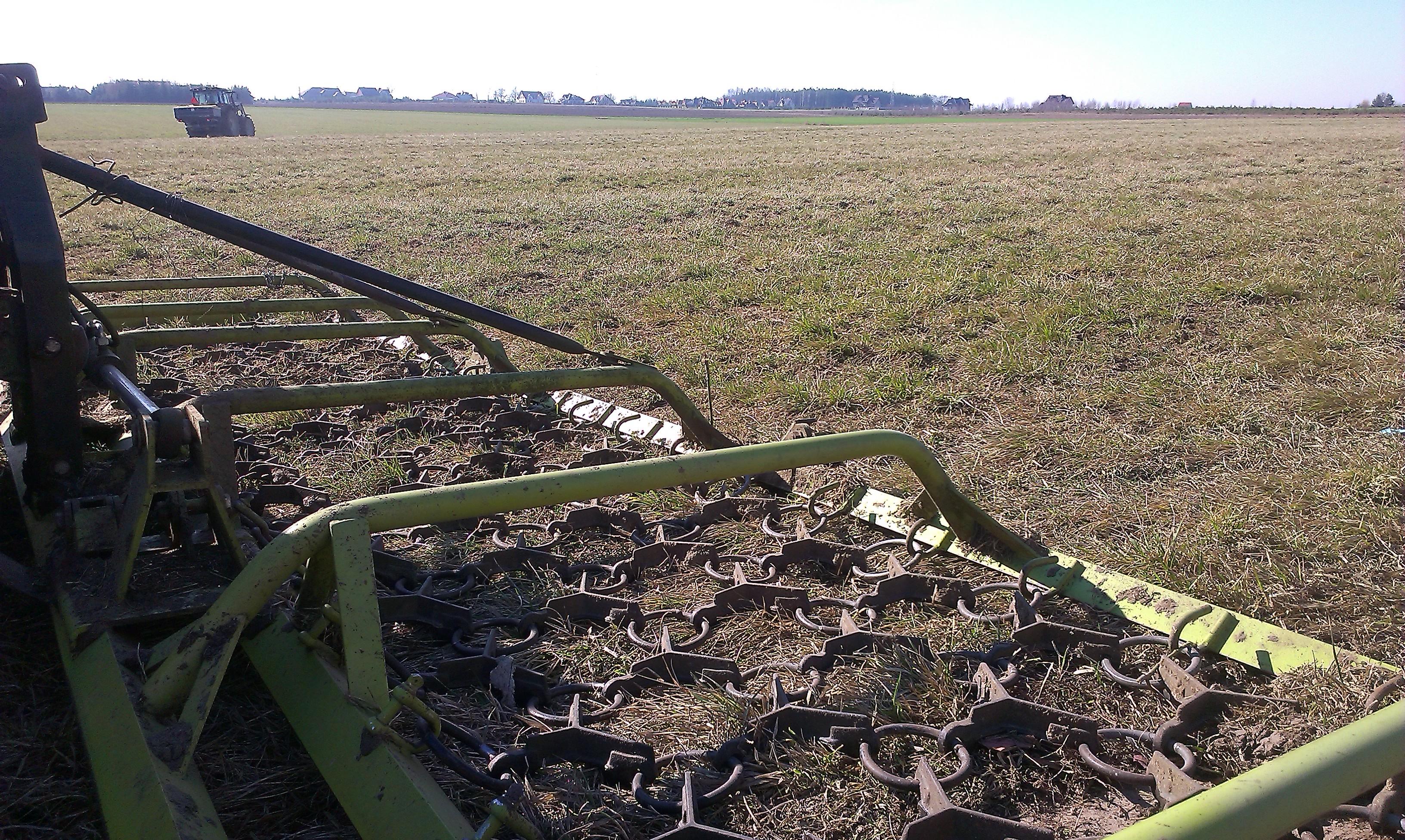Jaką mieszankę traw wybrać?