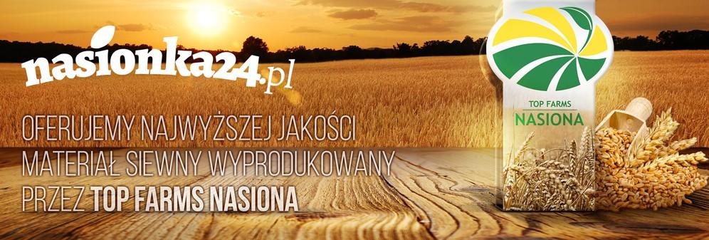 Nasiona zbóż w sklepie Nasionka24.pl