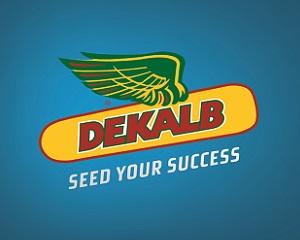 Strona internetowa DEKALB