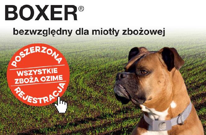 Poszerzona rejestracja herbicydu Boxer 800 EC