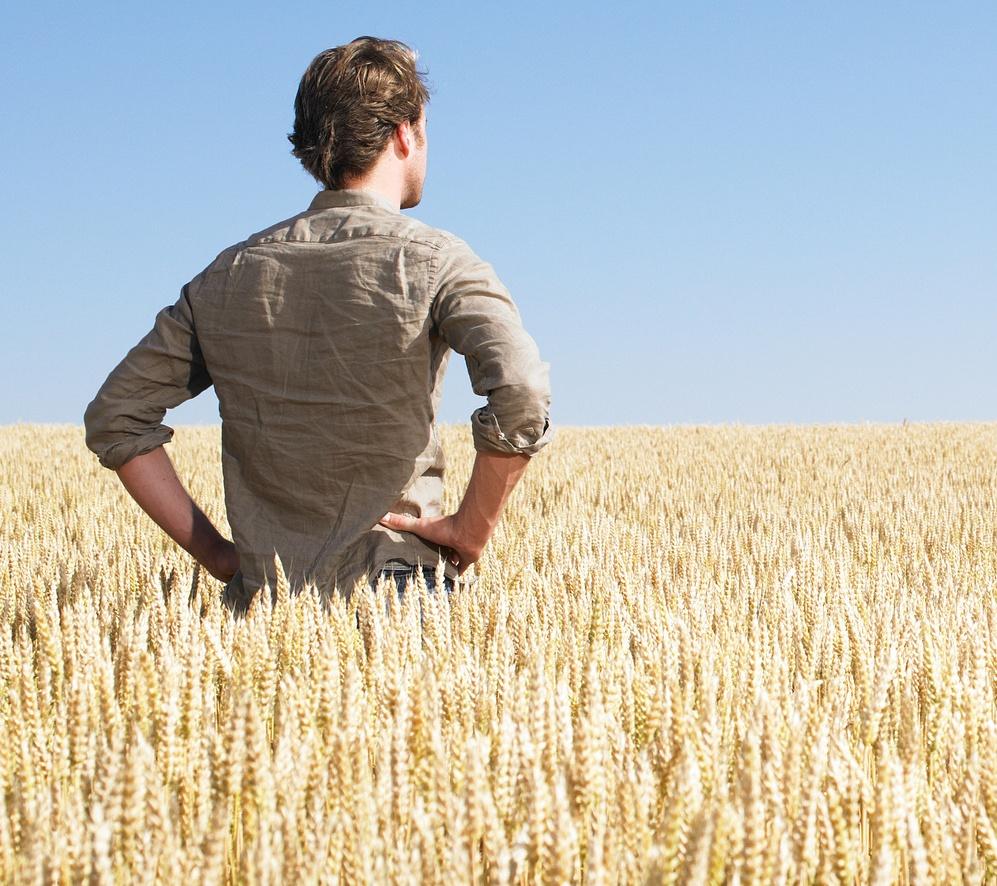 54 miliony euro dla młodych rolników