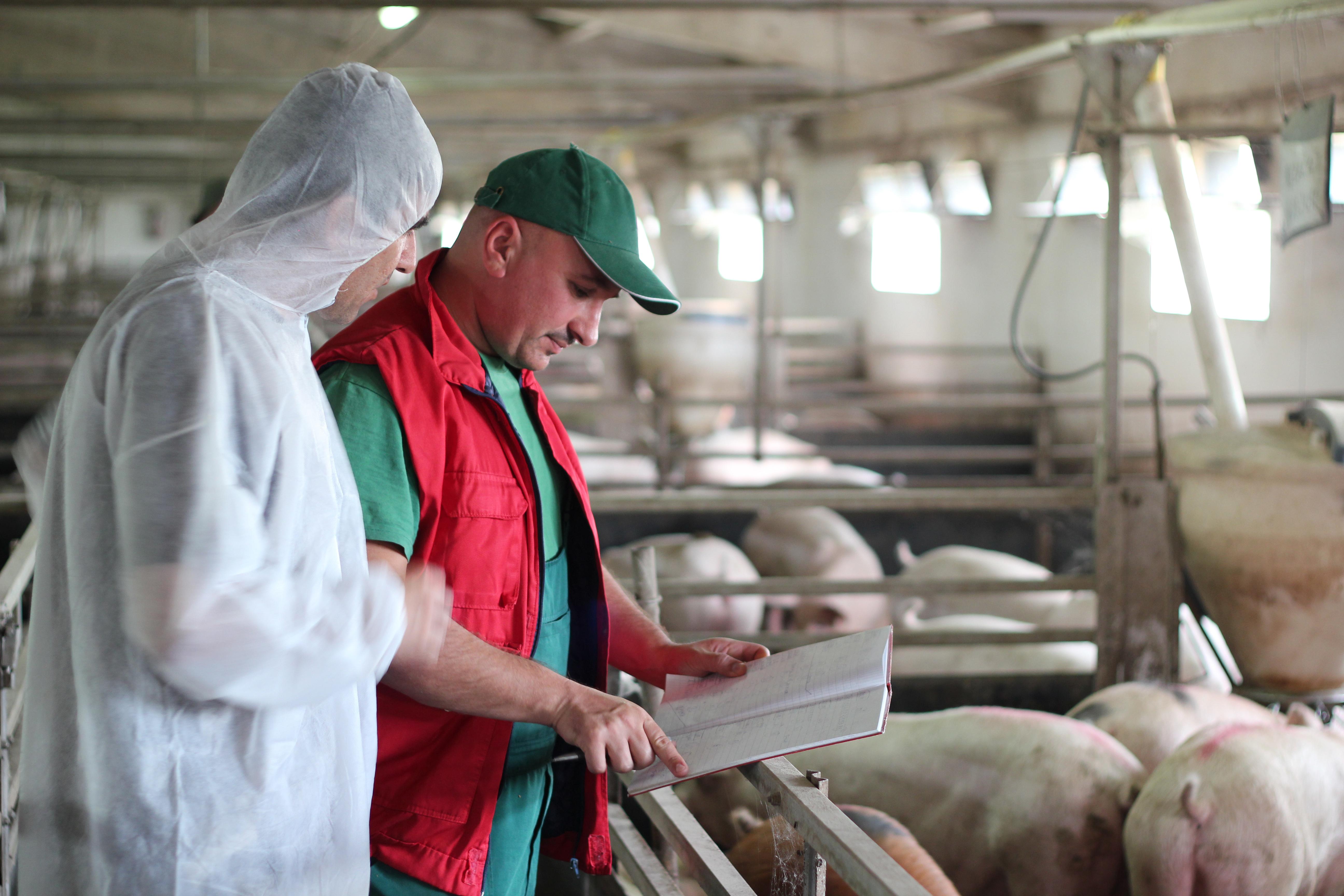 """Co z rolnikami, którzy nie przystąpili do """"Programu bioasekuracji""""?"""