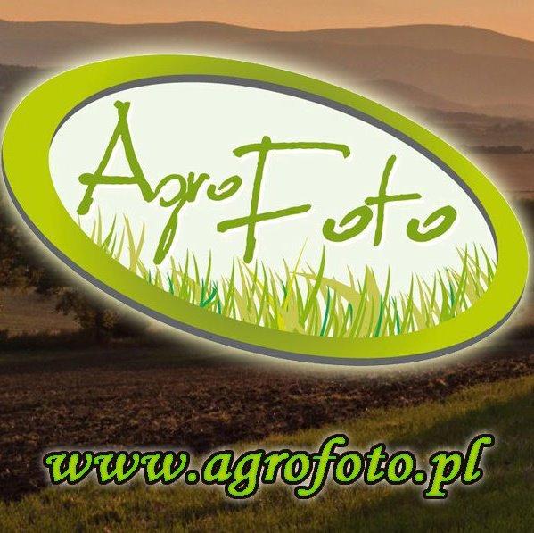 AgroFoto.pl poszukuje ludzi do pracy!