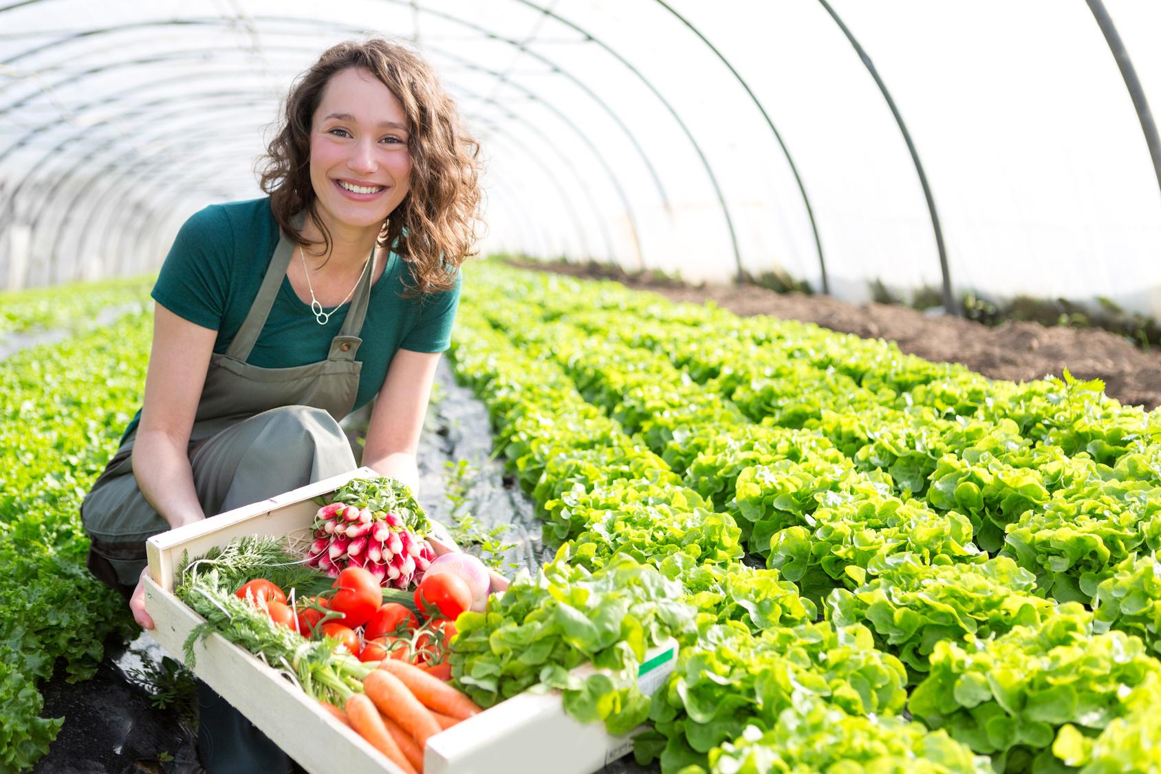 Jest już uaktualniona lista PROW 2007–2013 dla młodych rolników!