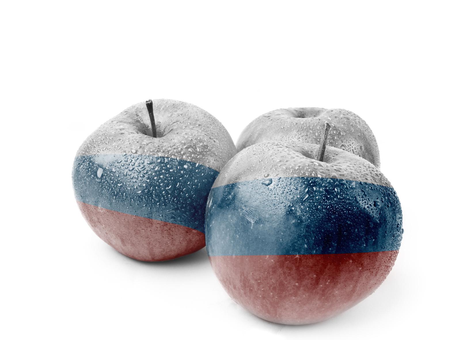 Rosja będzie niszczyć produkty rolne objęte embargiem