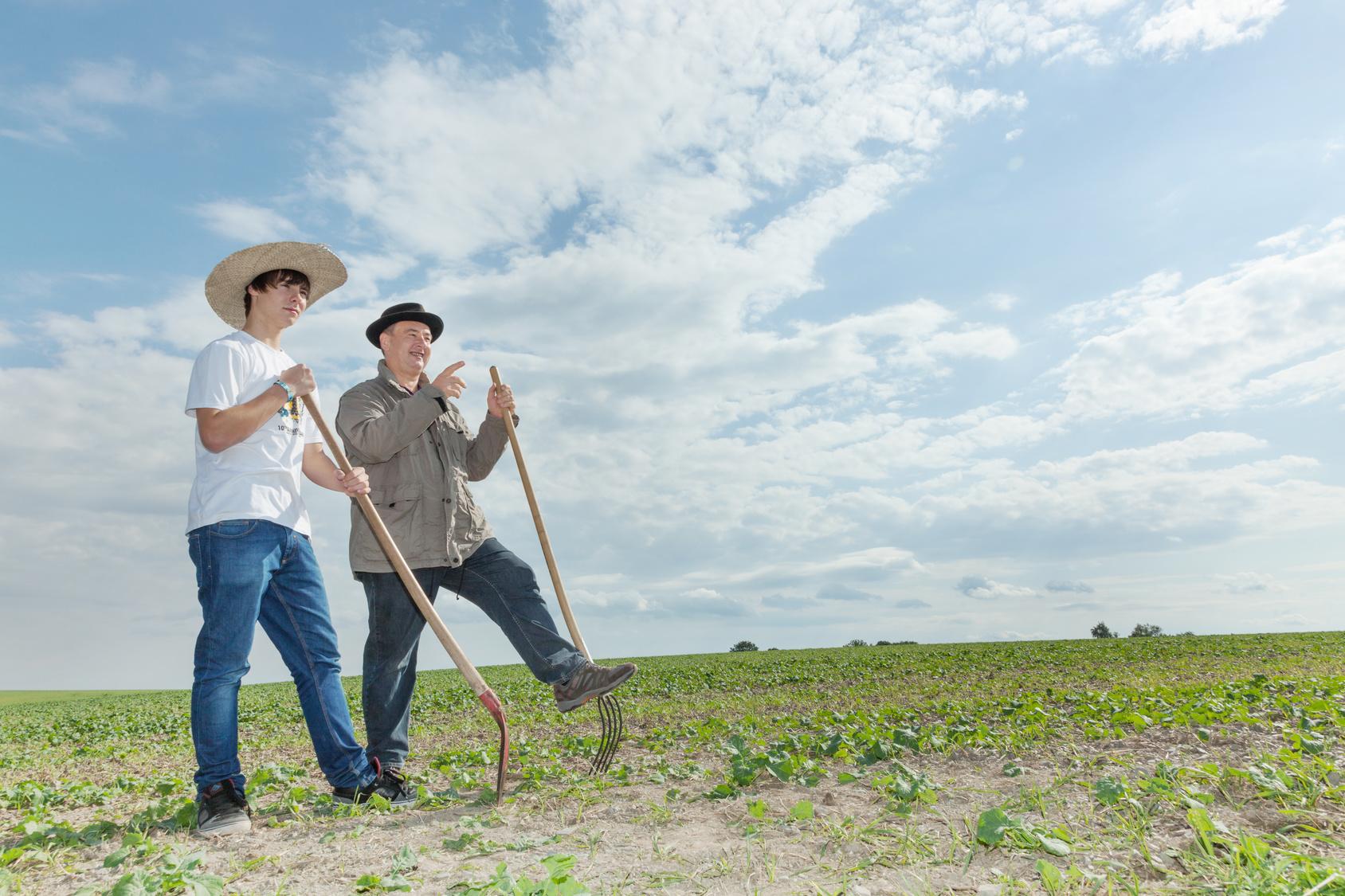 Jaki kierunek wybrać, by przejąć gospodarstwo rolne po rodzicach?