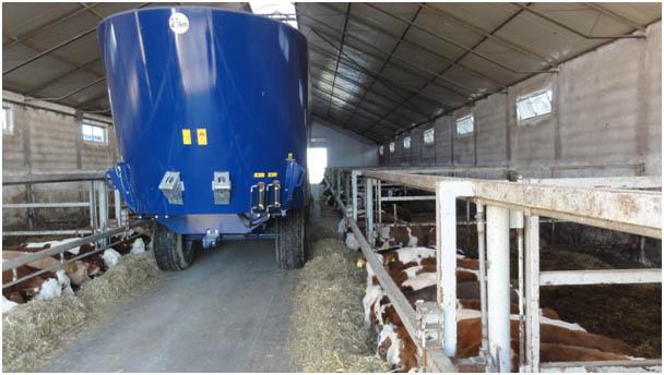 Dobór wozu paszowego pod kątem bydła mlecznego oraz opasowego.