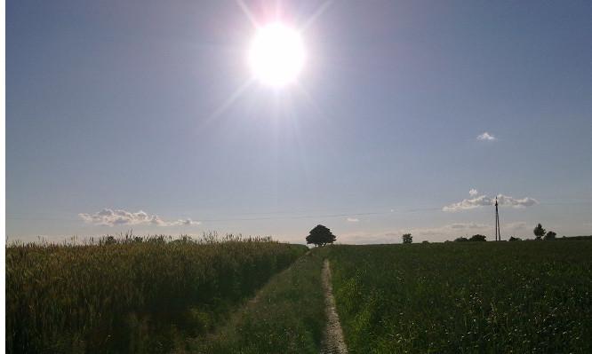 Zysk ze słońca w gospodarstwie