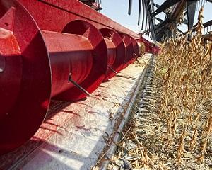 Kombajn zbożowy Axial-Flow marki Case IH zapewnia solidną wydajność przy młóceniu soi