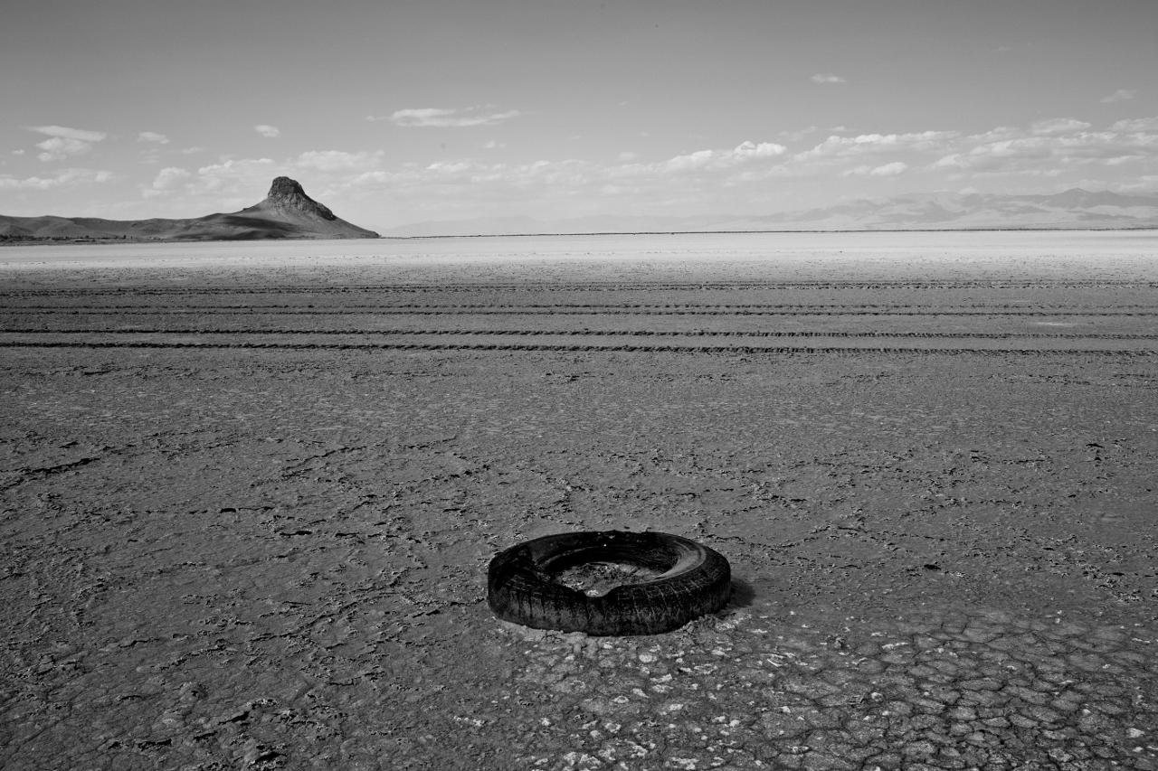Ruszyła druga edycja konkursu Syngenta Photography Award
