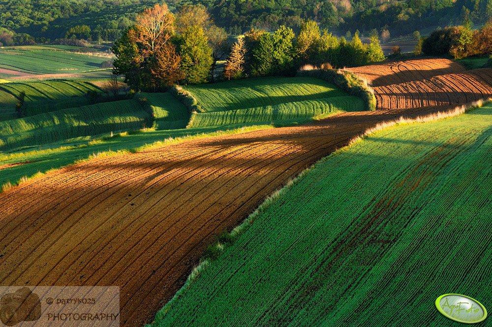 Ustawa o kształtowaniu ustroju rolnego czeka na podpis prezydenta