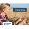 Tanie pestycydy - czy to na pewno się opłaca?
