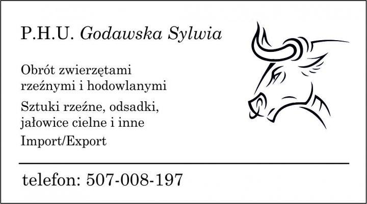 PHU Godawska2-1.jpg