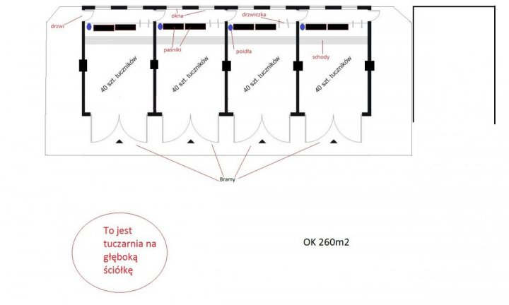 tuczarnia 2.jpg