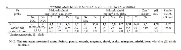 borowka.png