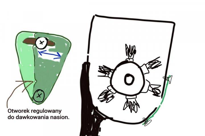 IMG_dawkowanie nasion a.jpg