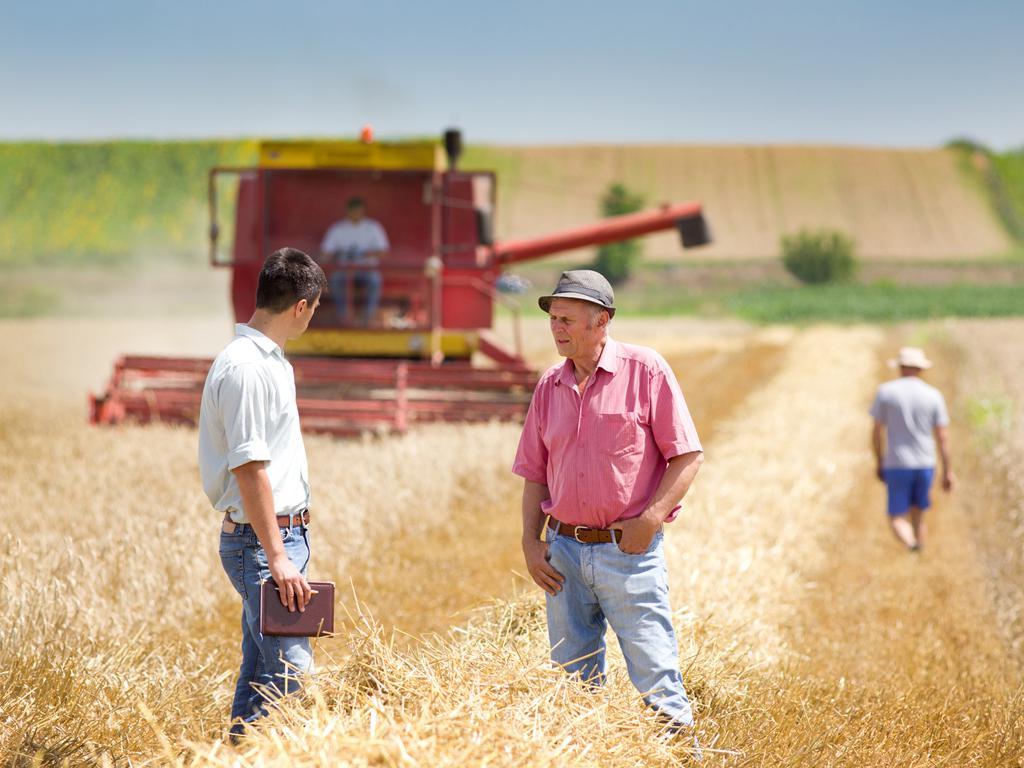 Co PROW 2014–2020 oferuje grupom producentów rolnych?