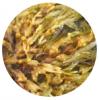Nawozy z alg - z czego powstają?