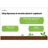 Herbicydy w rzepaku – większa niezależność od warunków wilgotnościowych gleby