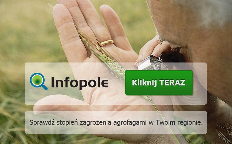 wizualizacja-INFOPOLE-wersja-ostateczna.jpg